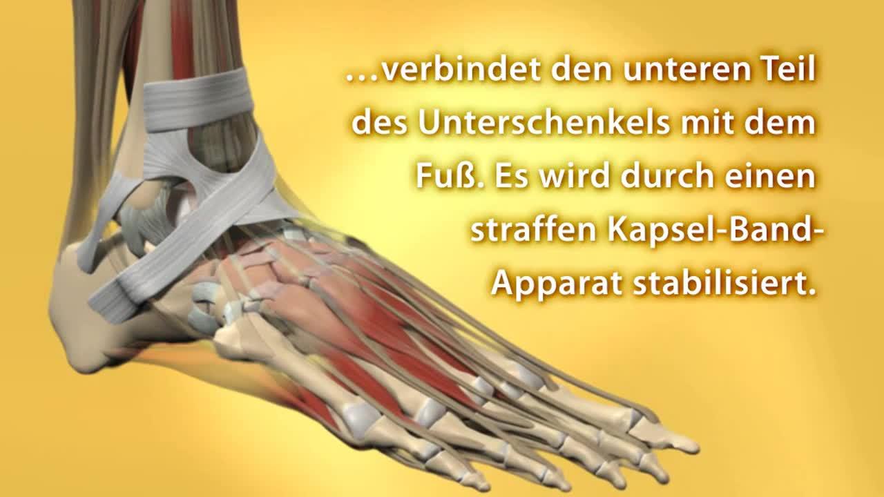 Arthroskopie (Sprunggelenk)