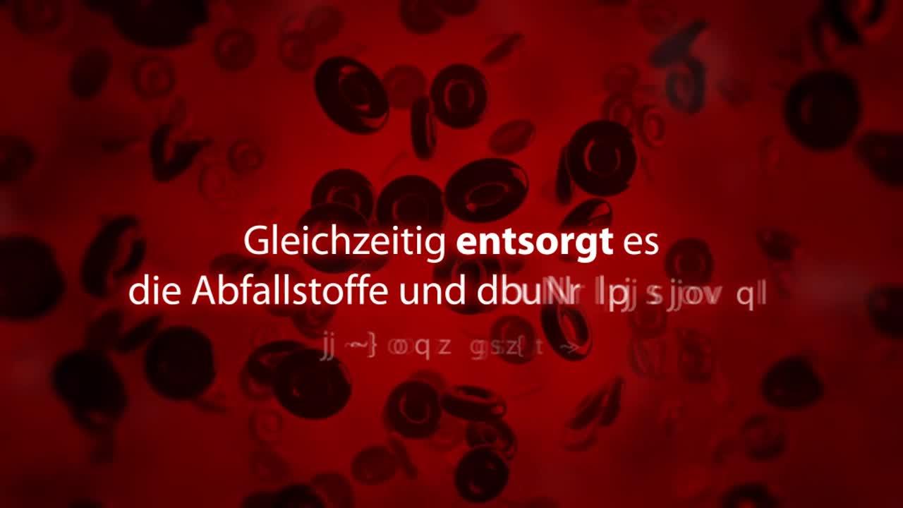 Hausärztlicher Gesundheitscheck Blutlabor
