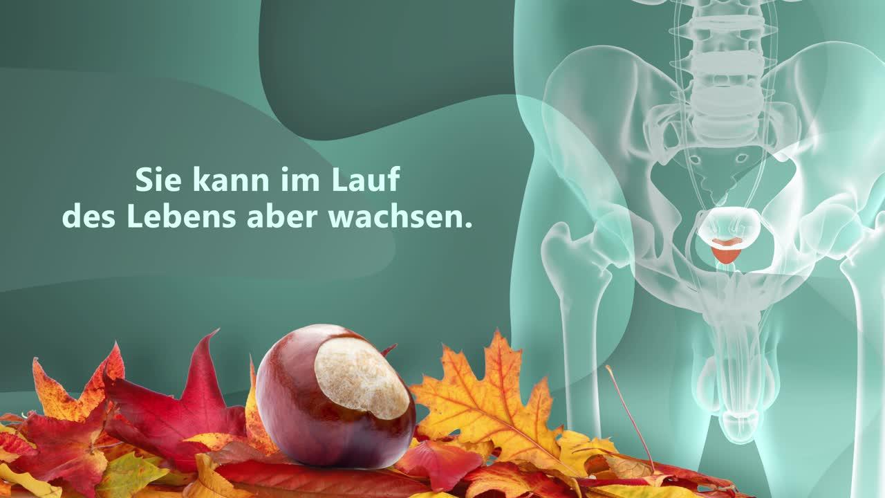 Prostatavergrößerung (gutartig)